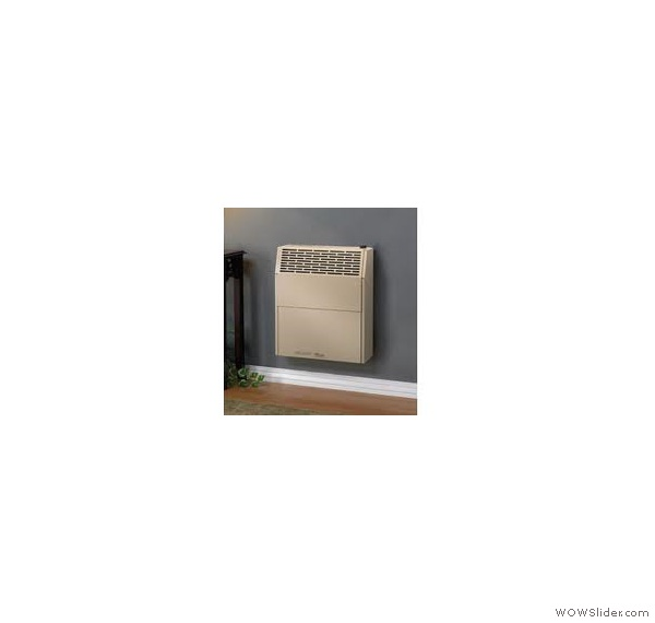 Direct Vent Wall Heater